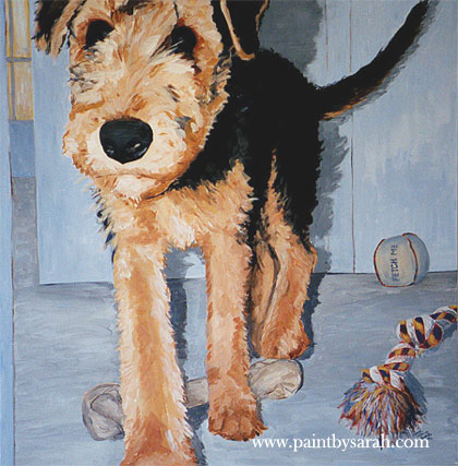 Airedale Pup at Large